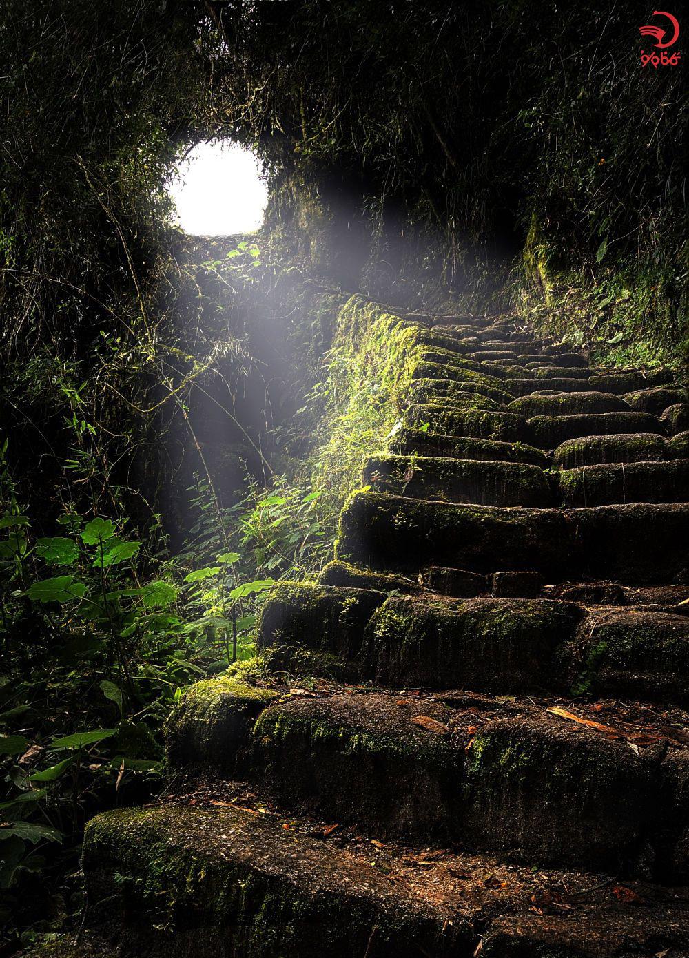 خیره کننده ترین راه پله ها