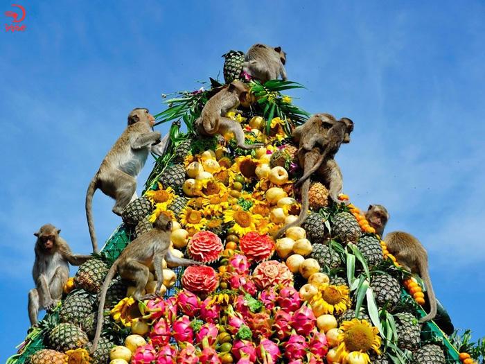 جشنواره ضیافت میمون ها، لپبوری، تایلند