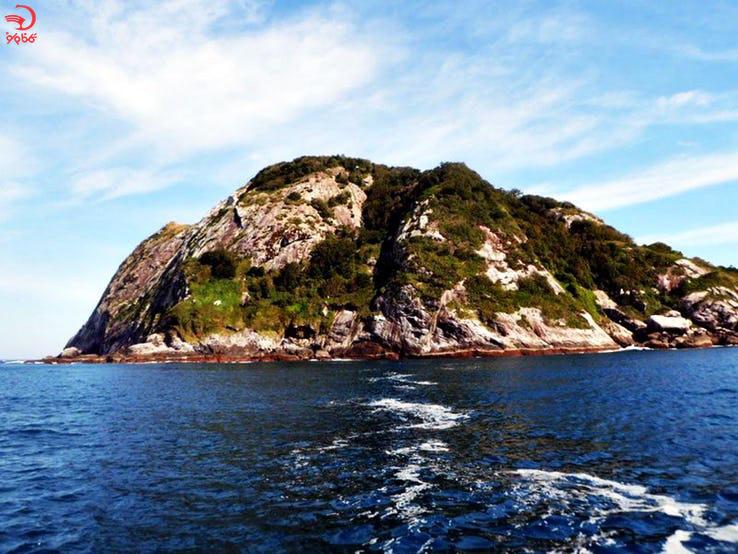 جزیره مارها برزیل