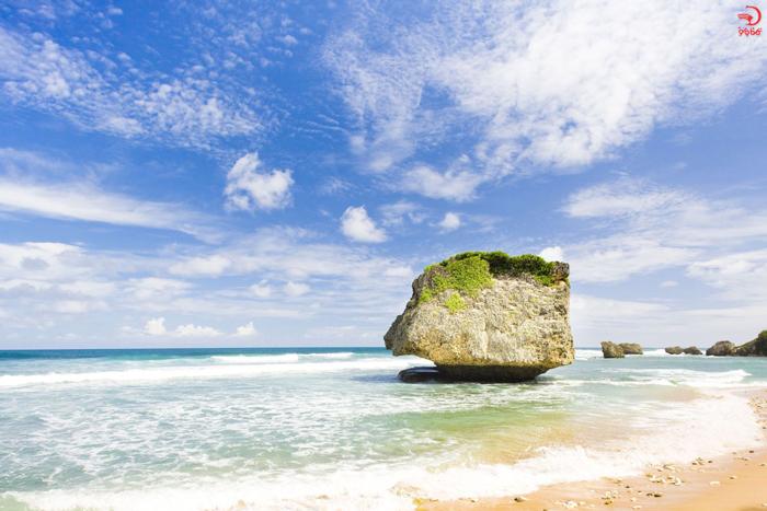 ساحل بسشبا، باربادوس