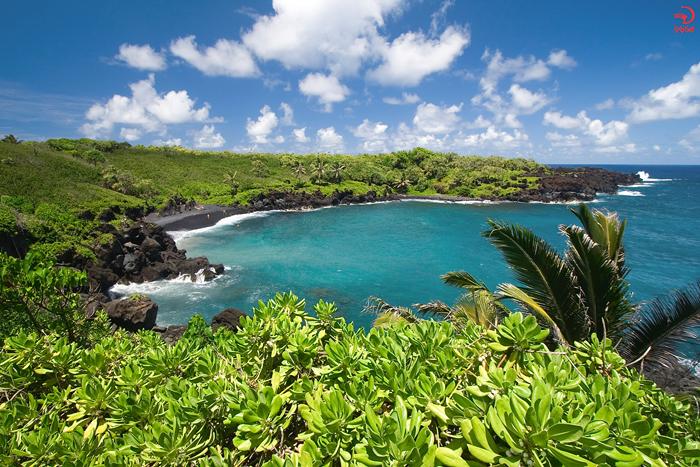 ساحل هونوکالانی، ماوی، هاوایی