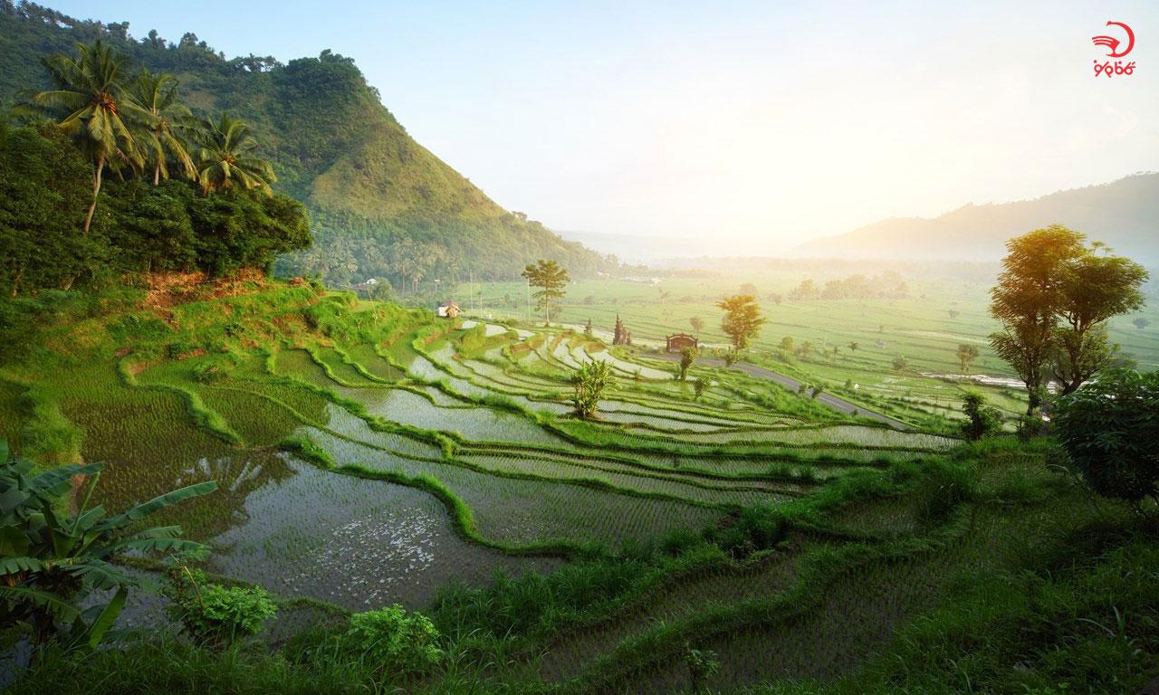 جاذبه های دیدنی اندونزی