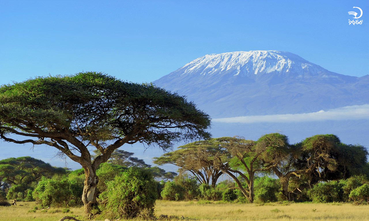 8 جهانگرد زنِ پیشرو در صنعت گردشگری