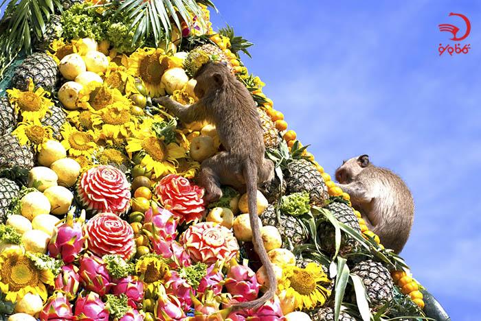 سرو بوفه غذا به میمون ها در بانکوک