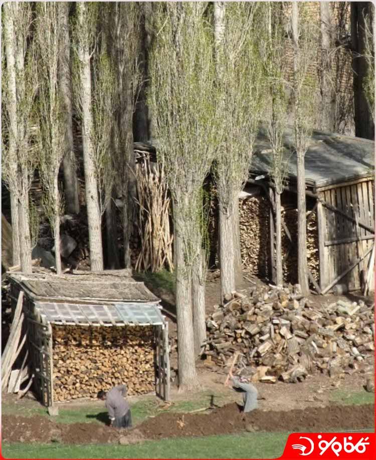 مشاغل روستای ایستا