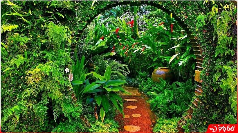 باغ بريف 2