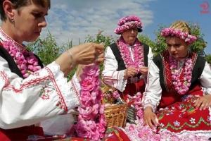 گلاب و گل های محمدی ایرانی که پایشان به بلغارستان رسید!