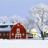 با 15 جاذبه گردشگری کانادا آشنا شوید