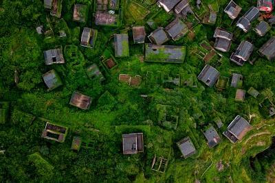 خانه های سرسبز در شنگشان چین